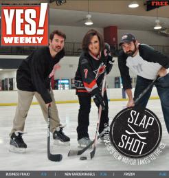 Slap shot (December 2013)